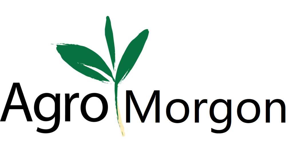Digital AgroMorgon