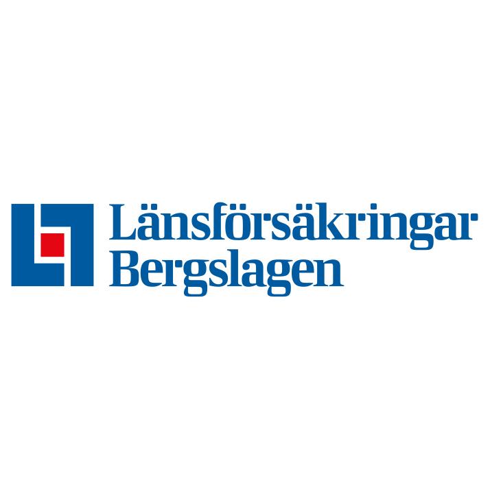 LF Bergslagen